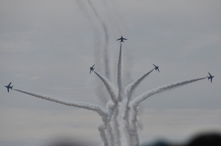 111130blueimpulse19l