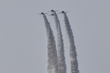 111130blueimpulse21l