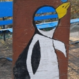 036 フンボルトペンギン