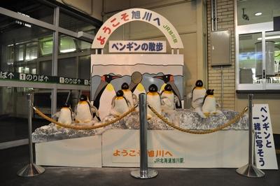 054 ペンギンの散歩