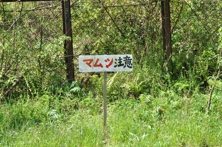 100511shikoku09