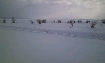 サロベツ原野